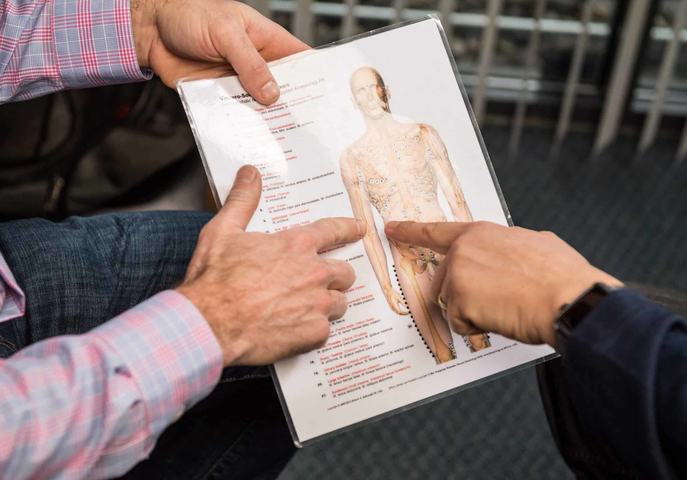 doctor reviewing an anatomy chart with patient